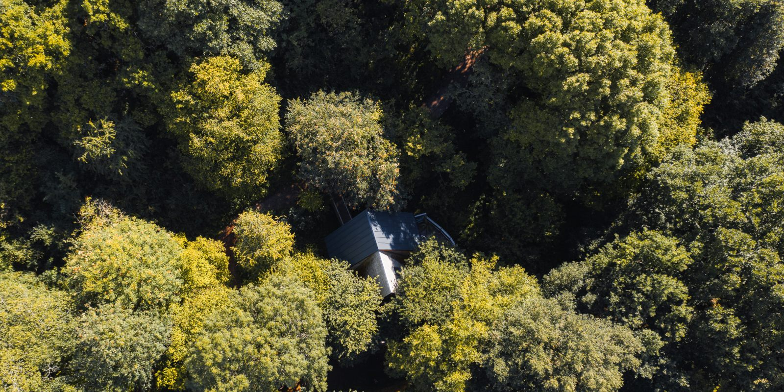Sustainability at The Hudnalls Hideout Treehouse